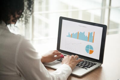using business software for data analysis